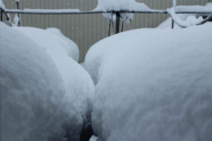 大雪の様子。