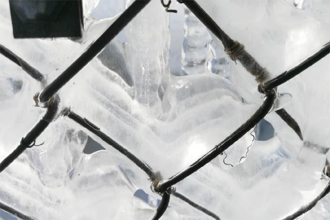 フェンスについた氷も不思議な感じになっていました。