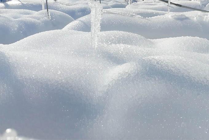 積もった雪の上に水が降り、それが凍って氷筍化。