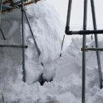 第7回県の花雪割草大会が開催されます!