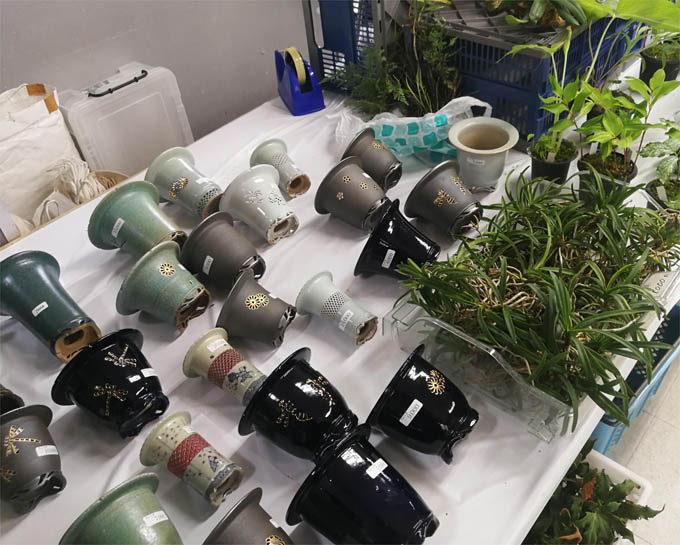 富貴蘭用の美しい鉢がたくさんありました。天山工房さんです。