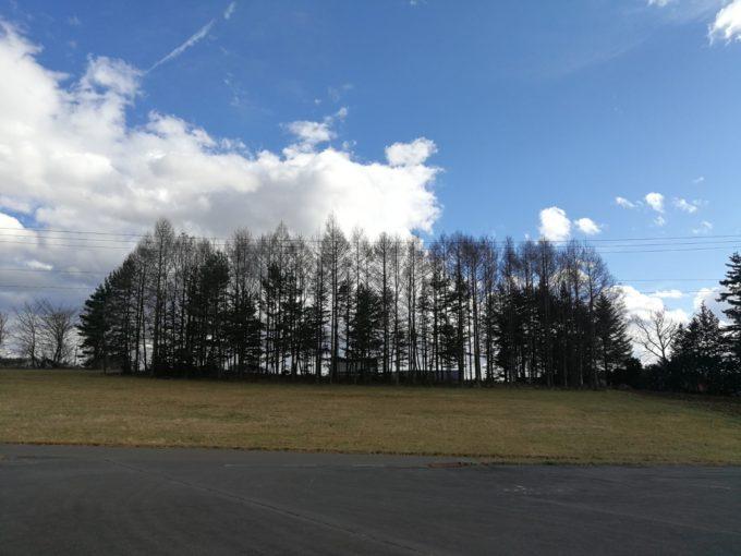 長野の日本山草から。晴天で昼間は暑いくらいでした。