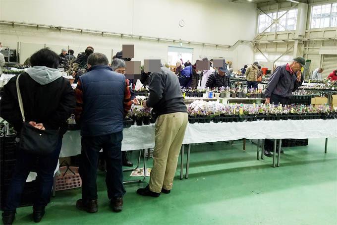 第8回 県の花大会