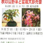 「秋の山野草と盆栽大即売会」に出店します。