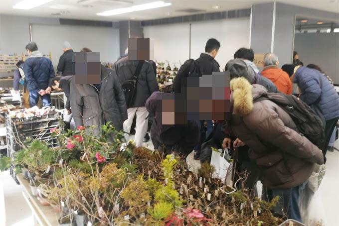 小品盆栽銘品展。盆栽、鉢、その他いろいろな即売品がならんでいました。
