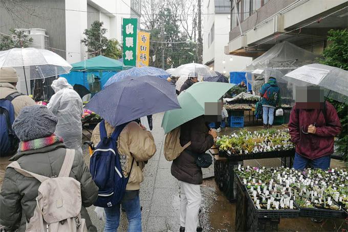 ボロ市は初日雨でしたが、小雨だったので朝からけっこうたくさんお客さん来てくれました。